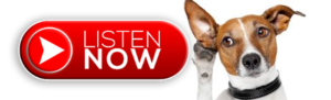 Listen-Now-300x91 Home